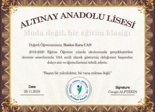 anadolu lisesi